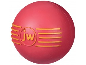 JW PET ISQUEAK Ball